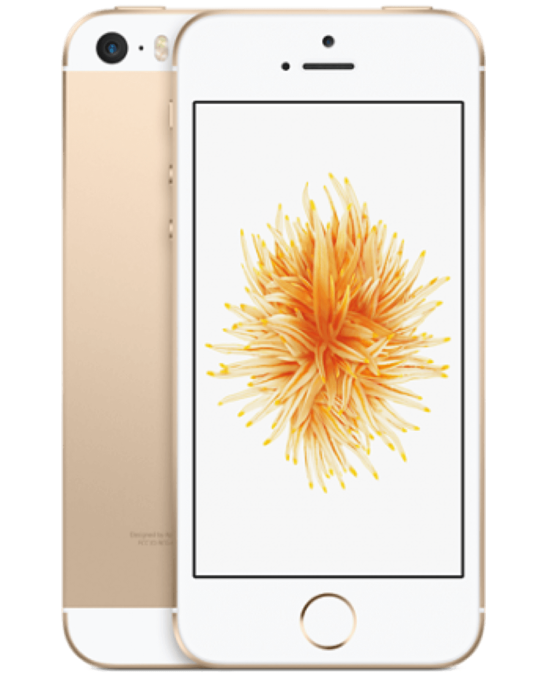 images/webwinkel/iphone-se-gold-base_3_1_2